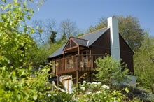 Treetops Holiday Cottage